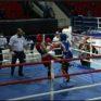 Кикбоксингехула турнир дIаяьхьира